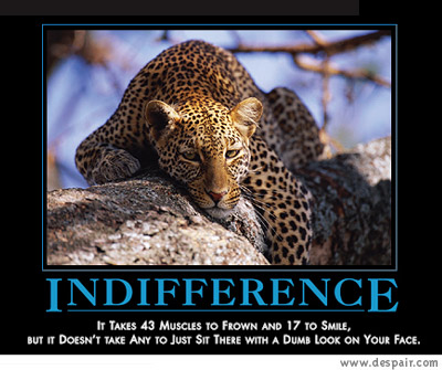 Pic Conversation Indifference